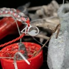 4Ocean - Overfishing Red Bracelet thumbnail